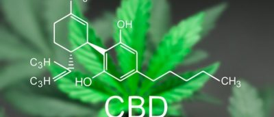 Benefits Offered By CBD Edibles